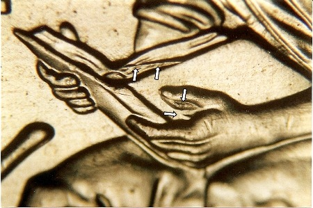2009 P LINCOLN CENT FORMATIVE YRS Doubled Die Error WDDR 033